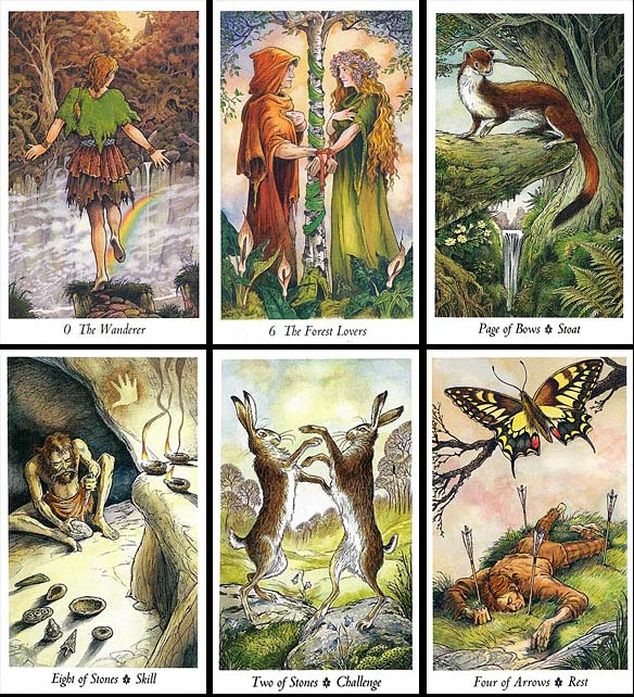 how to read wildwood tarot cards
