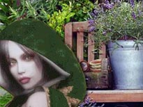 Wicca kruiden for Tuin lenormand